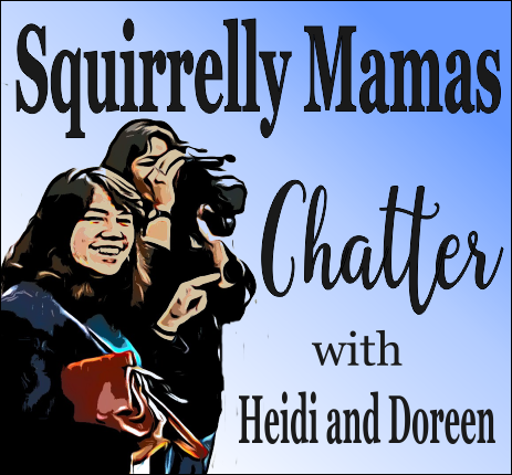 Squirrelly Mamas Chatter